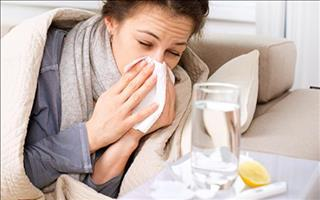 18/2747/influenza-middle.jpg