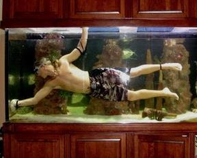 17/693/aquarium-middle.jpg
