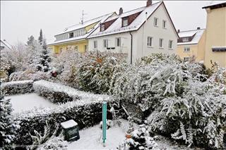 18/2740/firstsnow2012stg-2--middle.jpg